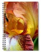 Orange Iris Spiral Notebook