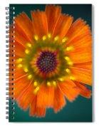 Orange Is The New Black Spiral Notebook