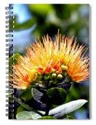 Orange Lehua On Volcano Ranch Spiral Notebook