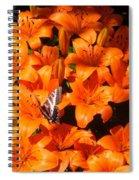 Orange Lilies Spiral Notebook
