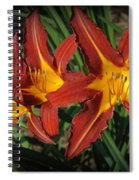 Orange Lillies Spiral Notebook