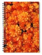 Orange Mums Spiral Notebook