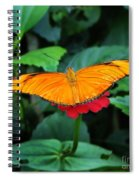 Orange On Pink Spiral Notebook