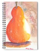 Orange Pear2 Spiral Notebook
