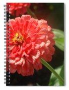 Orange Poof Spiral Notebook