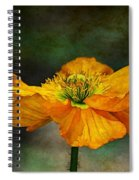 Orange Poppy Spiral Notebook