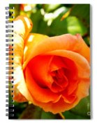 Orange Rose Bloom Spiral Notebook