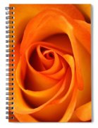 Orange Rose Spiral Notebook