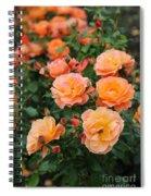 Orange Roses Spiral Notebook