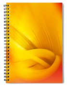 Orange Sherbet Spiral Notebook