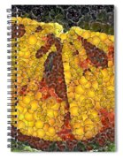 Orange Slice Spiral Notebook