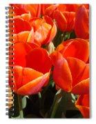 Orange Spring Tulip Flowers Art Prints Spiral Notebook
