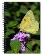 Orange Sulphur Spiral Notebook