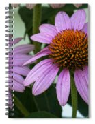 Orange Sunshine Spiral Notebook