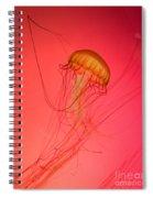 Orange Swimming Jellyfish Spiral Notebook