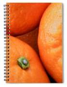 Orange Trio Spiral Notebook