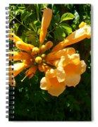 Orange Trumpets Spiral Notebook