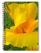 Orange Yellow Poppy Flower Art Print Spiral Notebook
