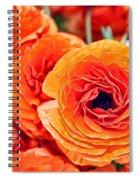 Orange You Happy Ranunculus Flowers By Diana Sainz Spiral Notebook