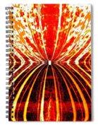 Orange Zest Spiral Notebook