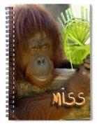 Orangutan Female Spiral Notebook