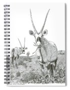 White Sands Orax  Spiral Notebook