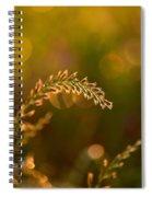 Orb Catcher Spiral Notebook
