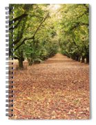 Orchard In The Morning Spiral Notebook