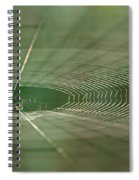 Orchard Orbweaver #2 Spiral Notebook