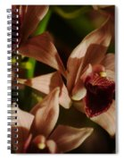 Orchid 137 Spiral Notebook