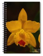 Orchid 139 Spiral Notebook