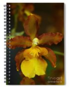 Orchid 140 Spiral Notebook