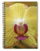 Orchid 141 Spiral Notebook