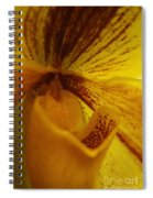 Orchid 142 Spiral Notebook