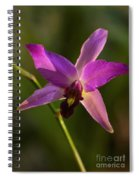 Orchid 149 Spiral Notebook