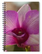 Orchid 152 Spiral Notebook