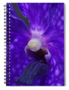 Orchid 196 Spiral Notebook