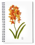 Orchid 2 Spiral Notebook