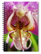 Orchid 4 Spiral Notebook