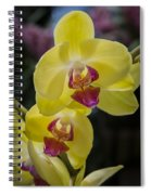 Orchid #5 Spiral Notebook