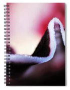 Orchid Abstract Spiral Notebook