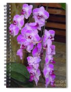 Orchid Beauties Spiral Notebook