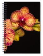 Orchid Beauty Spiral Notebook