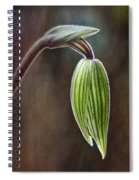 Orchid Bud Spiral Notebook
