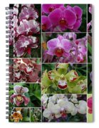 Orchid Collage 1 Spiral Notebook