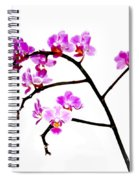 Orchid In White  Spiral Notebook