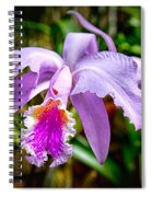 Orchid Life Spiral Notebook