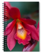 Orchid Love Spiral Notebook