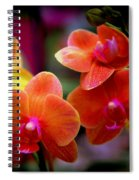 Orchid Melody Spiral Notebook