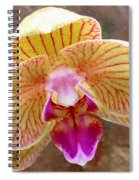 Orchid On Marble Spiral Notebook